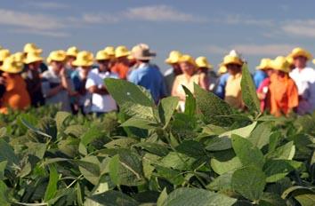 Agricultura Portuguesa