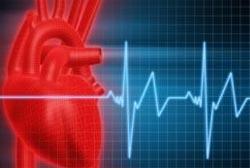 Cerca de 30 atletas morrem anualmente por problemas cardíacos