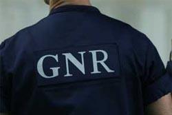 Maços de tabaco ilícito e aguardente apreendidos pela GNR