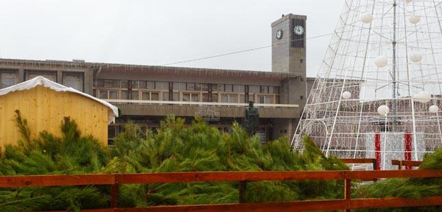 Câmara de Santo Tirso oferece pinheiros verdadeiros aos munícipes